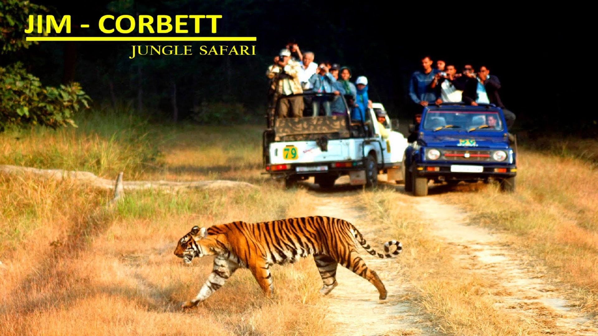 Tour Packages Mumbai